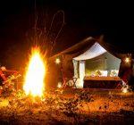 Tuskers Camping, Yala National Park, Sri Lanka, Wildlife, Camping