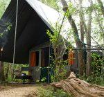 Tented Safari Camp, Mahoora Camp, Yala, Sri Lanka, Wildlife