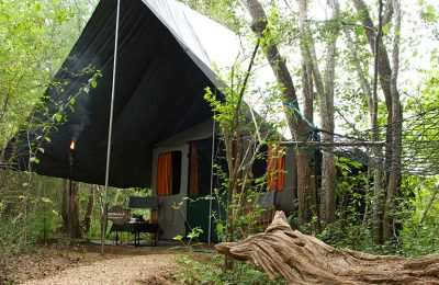 Tented Safari Camp, Mahoora Camp, Yala, Sri Lanka, Wildlife