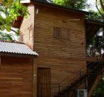 Wilpattu Tree House, Wilpattu National Park, Wildlife, Sri Lanka