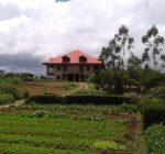 Forest Glen, Real Estate, Property, Nuwara Eliya