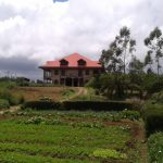 Forest Glen, Real Estate, Property, Nuwara Eliya