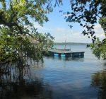 Salute59, River View, Lake, Madu River, Boat Safari,